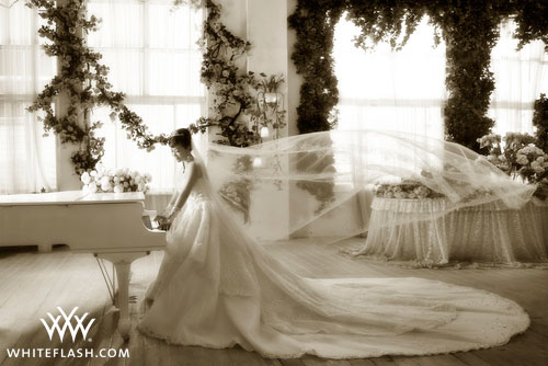 Where To Buy A Wedding Dress Online   Wedding dresses