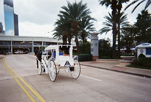 Downtown Houston Horse Drawn Carriages