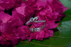 engagement rings on pink leaves