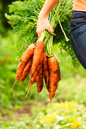 Lost-Engagement-Ring-Found-on-a-Carrot