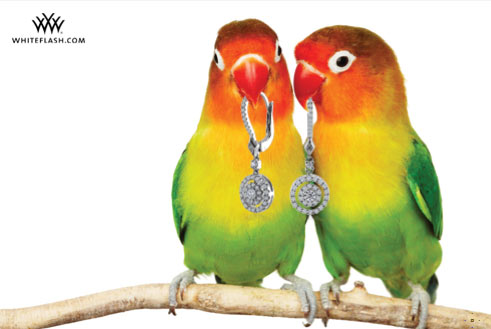 Polly Wants Diamond Earrings