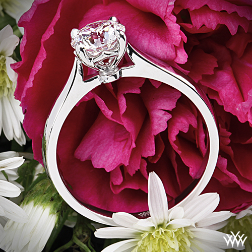 Solitaire Engagement Ring style