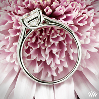 X-Prong Engagement Ring
