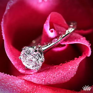 Vatche U-113 Solitaire Engagement Ring