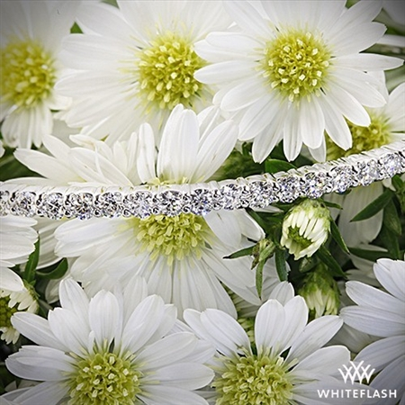 Gorgeous Diamonds, Great Price, & Outstanding Service!