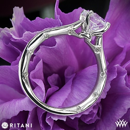 Ritani 1RZ2845 Modern Solitaire Engagement Ring