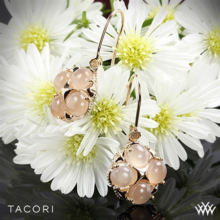 Tacori SE187P36 Moon Rosé Quad Dangle Earrings