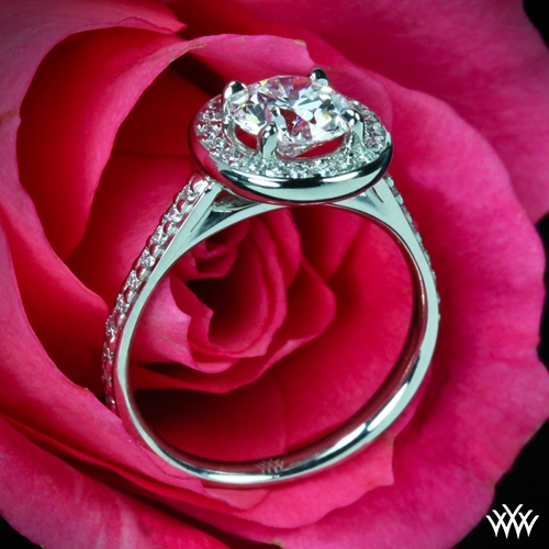 Halo Prong Diamond Engagement Ring