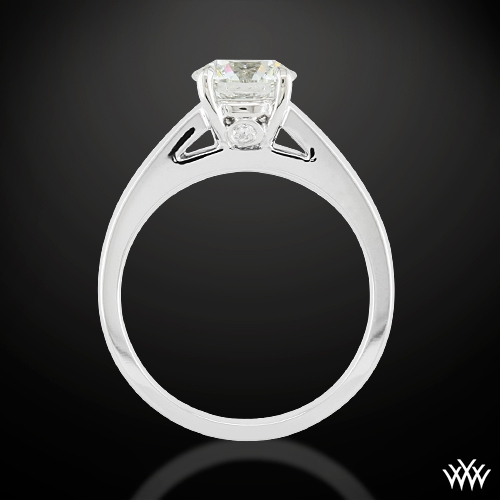"""Flush-Fit Cathedral"" Solitaire Engagement Ring Ring Ring Side View"